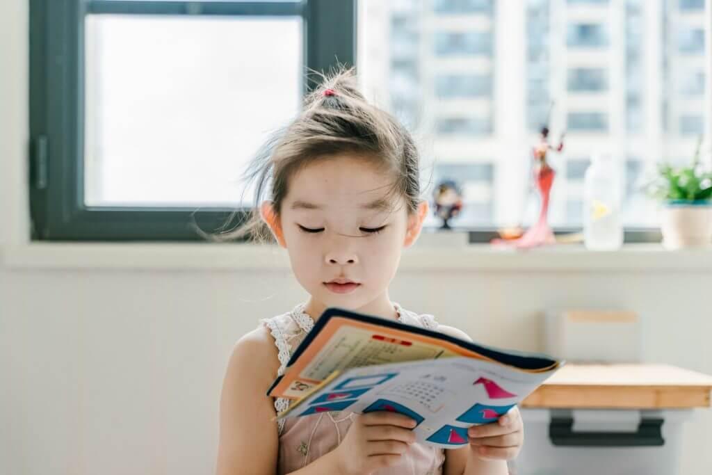 小学生のよむ力は読書量に比例するか兄妹で実際に試した結果