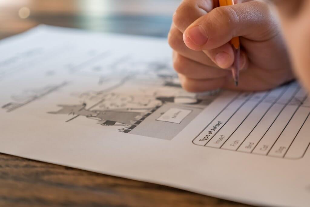 夏休みの自由研究・宿題やらない子への解決策